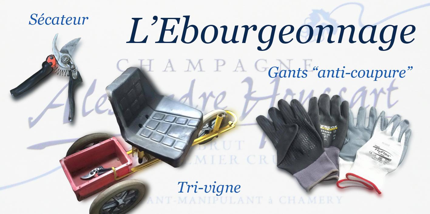 L'ébourgeonnage nécessite un sécateur, un tri-vigne et des gants - Champagne Alexandre Houssart