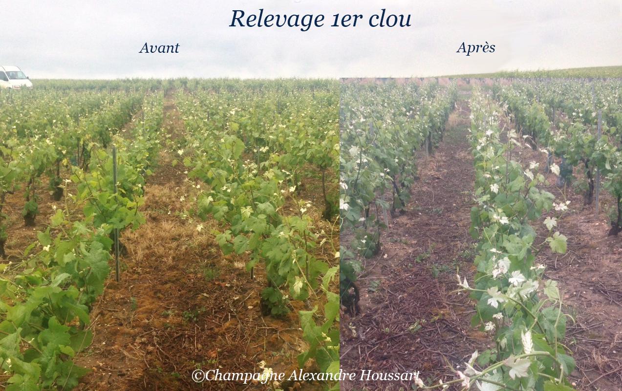 Relevage au premier clou (comparaison) - Champagne A. Houssart